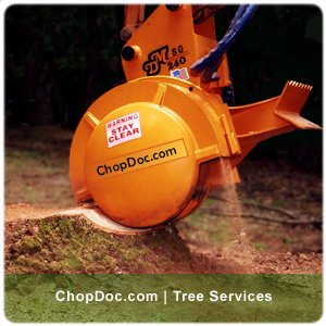 stump grinder services