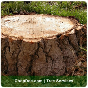 chopoc.com stump removal