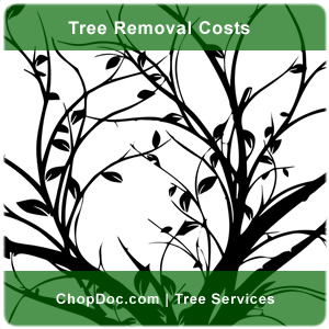 chopoc.com tree removal costs services