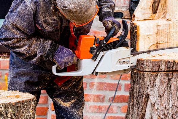 tree service killeen tx